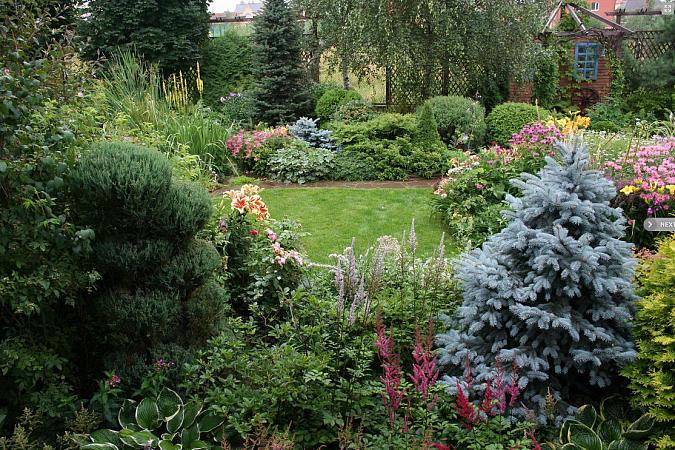Лилии в саду Елены